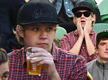 Niall Horan from the British boy band One Direction (centre) during the Nick Kyrgios of Australia plays Andy Murray of Great Britian match at the Australian Open, Melbourne Park, Melbourne, Tuesday, Jan. 27, 2015. The Australian Open tennis tournament will go from the 19th of January until the 1st of February 2015 and is Australia's foremost annual tennis event. (AAPImage/Julian Smith) NO ARCHIVING EDITORIAL USE ONLY