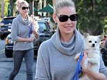 """""""State Of Affairs"""" star Katherine Heigl carrying her pooch after having lunch with her mom at Franklin and Company Cafe in Los Angeles. The actress was also seen smoking her electronic cigarrette while dining at the restaurant.\nFeaturing: Katherine Heigl\nWhere: Los Angeles, California, United States\nWhen: 27 Jan 2015\nCredit: Cousart/JFXimages/WENN.com"""