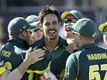 Australia's Mitchell Johnson (C) celebrates with team mates after taking the wicket of England's Eoin Morgan during their One Day International (ODI) tri-series cricket final match at the WACA ground in Perth, Western Australia February 1, 2015. REUTERS/Hamish Blair (AUSTRALIA - Tags: SPORT CRICKET)