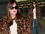 EXCLUSIVE: Dakota Johnson is spotted landing at JFK airport ahead of the premiere of '50 Shades of Grey' in NYC.  Pictured: Dakota Johnson Ref: SPL934361  050215   EXCLUSIVE Picture by: XactpiX/Splash News  Splash News and Pictures Los Angeles: 310-821-2666 New York: 212-619-2666 London: 870-934-2666 photodesk@splashnews.com