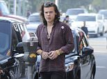 Picture Shows: Harry Styles  February 04, 2015    'One Direction' member Harry Styles and his girlfriend Nadine Leopold spotted out for frozen yogurt in Beverly Hills, California.    Harry who celebrated his 21st birthday February 1st, reportedly got Nadine's initials tattooed on his body. Harry was also sporting a button that read 'Love'.    Exclusive  UK RIGHTS ONLY    Pictures by : FameFlynet UK © 2015  Tel : +44 (0)20 3551 5049  Email : info@fameflynet.uk.com