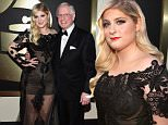 LOS ANGELES, CA - FEBRUARY 08: Recording Artist Meghan Trainor attends The 57th Annual GRAMMY Awards at the STAPLES Center on February 8, 2015 in Los Angeles, California.  (Photo by Larry Busacca/Getty Images for NARAS)