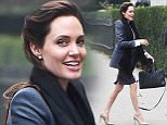 Picture Shows: Angelina Jolie  February 10, 2015\n \n ** min web / online fee £400 for set **\n \n Actress and humanitarian Angelina Jolie is seen arriving at a Hotel for a business meeting with Conservative politician and friend William Hague in Central London, England.\n \n Angelina was dressed to impress, having recently visited the London School of Economics with William to open Europe's first academic centre to combat the brutality faced by women in warzones across the globe.\n \n ** min web / online fee £400 for set **\n \n Exclusive All Rounder\n WORLDWIDE RIGHTS\n Pictures by : FameFlynet UK © 2015\n Tel : +44 (0)20 3551 5049\n Email : info@fameflynet.uk.com
