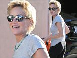 Picture Shows: Sharon Stone  February 11, 2015\n \n 'Basic Instinct' actress Sharon Stone stops to visit a friend's house in Beverly Hills, California. 56-year-old Sharon was spotted without her new boyfriend, 43-year-old actor David DeLuise.\n \n Non-Exclusive\n UK RIGHTS ONLY\n \n Pictures by : FameFlynet UK © 2015\n Tel : +44 (0)20 3551 5049\n Email : info@fameflynet.uk.com