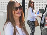 "Picture Shows: Sofia Vergara  February 11, 2015\n \n Newly-engaged actress Sofia Vergara is seen leaving the gym in West Hollywood, California. Besides working on her hit TV series 'Modern Family', Sofia has been busy planning her wedding to Joe Manganiello, recently telling 'Extra's Mario Lopez that ""It's going to be crazy, we want to do something really big."" \n \n Non-Exclusive\n UK RIGHTS ONLY\n \n Pictures by : FameFlynet UK © 2015\n Tel : +44 (0)20 3551 5049\n Email : info@fameflynet.uk.com"