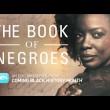 bookof negroes