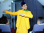 Female air hostess / flight attendant standing in aisle on aircraft, pointing to exit, portrait. *POSED BY MODEL*