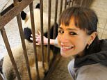 Patting a panda at Chengdu Breeding Centre in China - supplied by the writer