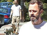 EXCLUSIVE TO INF.\nMarch 6, 2015: Giovanni Ribisi is seen taking his dog for a walk in Los Angeles, California today. The American actor, 40, filed for divorce in January from British model Agyness Deyn, 31, after two-and-a-half years of marriage.\nMandatory Credit: Chiva/INFphoto.com Ref: infusla-276