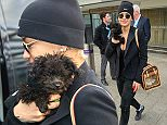 EXCLUSIVE: Rita Ora flies into Heathrow Airport from Los Angeles carrying her dog Cher Bear.  Pictured: Rita Ora Ref: SPL967053  050315   EXCLUSIVE Picture by: Steve Bagness/Splash News  Splash News and Pictures Los Angeles: 310-821-2666 New York: 212-619-2666 London: 870-934-2666 photodesk@splashnews.com