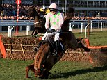 Annie Power ridden by Ruby Walsh falls after jumping the last fence during the OLBG Mares' Hurdle on Champion Day during the Cheltenham Festival at Cheltenham Racecourse. PRESS ASSOCIATION Photo. Picture date: Tuesday March 10, 2015. See PA story RACING Cheltenham. Picture credit should read: Nick Potts/PA Wire. RESTRICTIONS: Editorial Use only, commercial use is subject to prior permission from The Jockey Club/Cheltenham Racecourse. Call +44 (0)1158 447447 for further information.