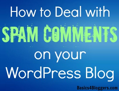 Deal with Spam Comments on WordPress