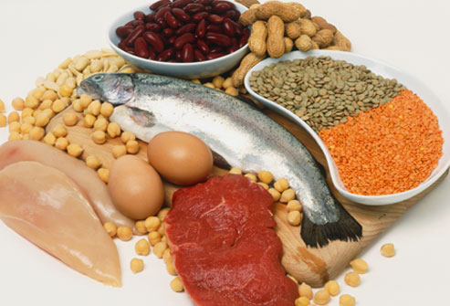 the-best-high-protein-foods-