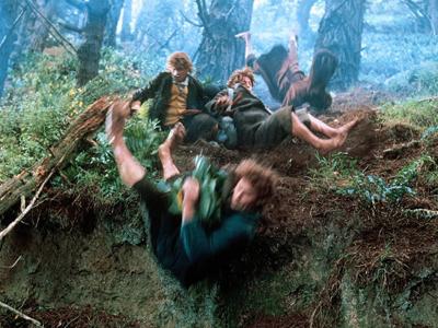 «Властелин колец: Братство Кольца» — приключенческий фильм 2001 года, первая часть кинотрилогии, снятой Питером Джексоном