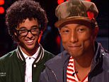 the voice Pharrell Williams