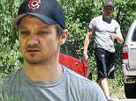 134818, EXCLUSIVE: Jeremy Renner steps out for the first time since wife allegedly was going to release personal videos in LA. Jeremy can be seen doing some gardening outside his house. Los Angeles, California - Friday March 27, 2015. Photograph: Sam Sharma, © PacificCoastNews. Los Angeles Office: +1 310.822.0419 sales@pacificcoastnews.com FEE MUST BE AGREED PRIOR TO USAGE