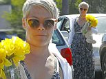 Picture Shows: Pink Hart  March 28, 2015\n \n Singer Pink stops by a grocery store to pick up some flowers and a stuffed animal in Malibu, California. Pink has been laying low lately after announcing late last year that she will now go by her real name Alecia Moore.\n \n Exclusive All Round\n UK RIGHTS ONLY\n \n Pictures by : FameFlynet UK © 2015\n Tel : +44 (0)20 3551 5049\n Email : info@fameflynet.uk.com