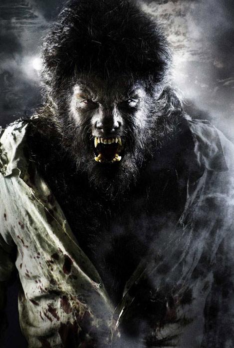 wolf-man-creative-movie-posters,مرد-گرگ-نما-پوستر-فیلم-خلاق
