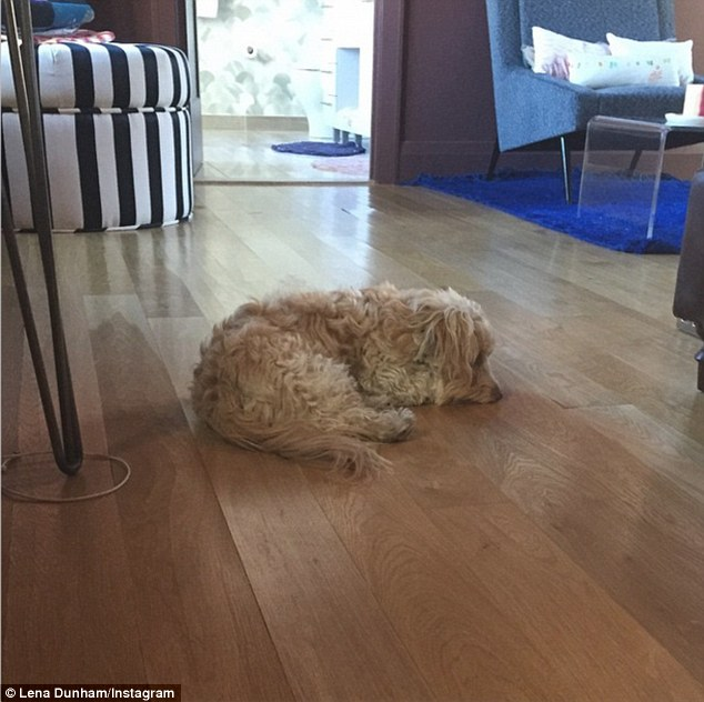 Ruff times: The actress recently shared that her dog, Lamby, was sick with a stomach ailment