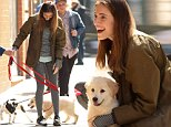 Girls star Allison Williams was spotted taking her puppy Moxie for a walk today in NYC.  Allison was all smiles while playing with her pup.\n\nPictured: Allison Williams\nRef: SPL991567  060415  \nPicture by: Lenny Abbot / Splash News\n\nSplash News and Pictures\nLos Angeles: 310-821-2666\nNew York: 212-619-2666\nLondon: 870-934-2666\nphotodesk@splashnews.com\n