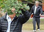 "Picture Shows: Dustin Hoffman  April 08, 2015\n \n ""The Graduate"" star Dustin Hoffman plays a little game of hide & seek with Photographers in Brentwood, California. \n \n While heading to a business meeting, Dustin showed off his playful side as he jokingly hid behind a tree branch!\n \n Exclusive - All Round\n UK RIGHTS ONLY\n \n Pictures by : FameFlynet UK © 2015\n Tel : +44 (0)20 3551 5049\n Email : info@fameflynet.uk.com"
