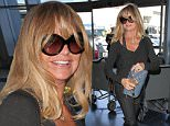 8 April 2015.\nGoldie Hawn pictured at Los Angeles International Airport\nCredit: BG/GoffPhotos.com   Ref: KGC-300/150408NR2\n**UK, Spain, Italy, China Sales Only**