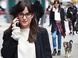 Dakota Johnson walks her dog in NYC.\n\nPictured: Dakota Johnson\nRef: SPL994841  100415  \nPicture by: Ron Asadorian / Splash News\n\nSplash News and Pictures\nLos Angeles: 310-821-2666\nNew York: 212-619-2666\nLondon: 870-934-2666\nphotodesk@splashnews.com\n