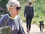 UK CLIENTS MUST CREDIT: AKM-GSI ONLY\nEXCLUSIVE: Miley Cyrus and her best friend go on a hike in LA, the young singer sweat it out while dancing and singing a few tunes.\n\nPictured: Miley Cyrus\nRef: SPL996967  120415   EXCLUSIVE\nPicture by: AKM-GSI / Splash News\n\n