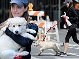 Actress Allison Williams walks to Petco with her Golden retriever mix Moxie on her 27th birthday in New York City.\n\nPictured: Allison Williams\nRef: SPL998244  130415  \nPicture by: Christopher Peterson/Splash News\n\nSplash News and Pictures\nLos Angeles: 310-821-2666\nNew York: 212-619-2666\nLondon: 870-934-2666\nphotodesk@splashnews.com\n
