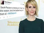 Mandatory Credit: Photo by Jim Smeal/BEI/REX Shutterstock (4544979at).. Sarah Paulson.. An Evening with the Women of American Horror Story, Los Angeles, America - 17 Mar 2015.. ..