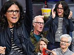 LOS ANGELES, CA - APRIL 13:  Julia Louis-Dreyfus (R) and Brad Hall (L) attend a basketball game between the Denver Nuggets and the Los Angeles Clippers at Staples Center on April 13, 2015 in Los Angeles, California.  (Photo by Noel Vasquez/GC Images)