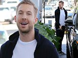 Calvin Harris seen pumping gas in West Hollywood, CA.  Pictured: Calvin Harris Ref: SPL997515  130415   Picture by: Splash News  Splash News and Pictures Los Angeles: 310-821-2666 New York: 212-619-2666 London: 870-934-2666 photodesk@splashnews.com