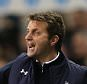 File Photo: Tim Sherwood has emerged as a frontrunner to become the next Queens Park Rangers manager. Tottenham Hotspur's Manager Tim Sherwood on the touchline ... Soccer - Barclays Premier League - Tottenham Hotspur v Cardiff City - White Hart Lane  ... 02-03-2014 ... London ... England ... Photo credit should read: Stephen Pond/EMPICS Sport. Unique Reference No. 19171906 ...