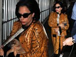 EXCLUSIVE: Lady Gaga traveling with two dogs at LAX airport in Los Angeles, CA.\n\nPictured: Lady Gaga\nRef: SPL1001546  190415   EXCLUSIVE\nPicture by: Diabolik / Splash News\n\nSplash News and Pictures\nLos Angeles: 310-821-2666\nNew York: 212-619-2666\nLondon: 870-934-2666\nphotodesk@splashnews.com\n