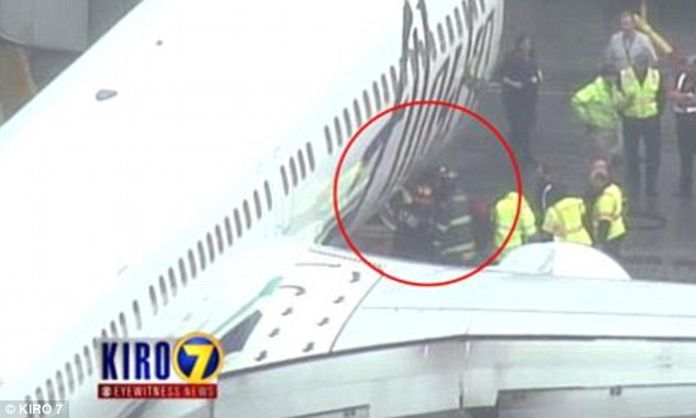 Nap time: Junior says he was exhausted when he dosed off while loading an Alaska Airlines flight on April 13. Above, a picture of Junior being rescued from the cargo hold after the plane was forced to turn around