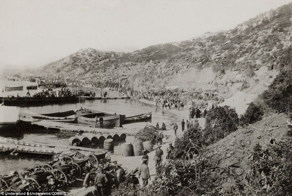 Disastrous campaign: Some 86,000 Turkish, 29,500 British and Irish, 12,000 French and 11,000 Australian and New Zealand ('Anzac') troops died during eight months of fighting in modern-day Turkey