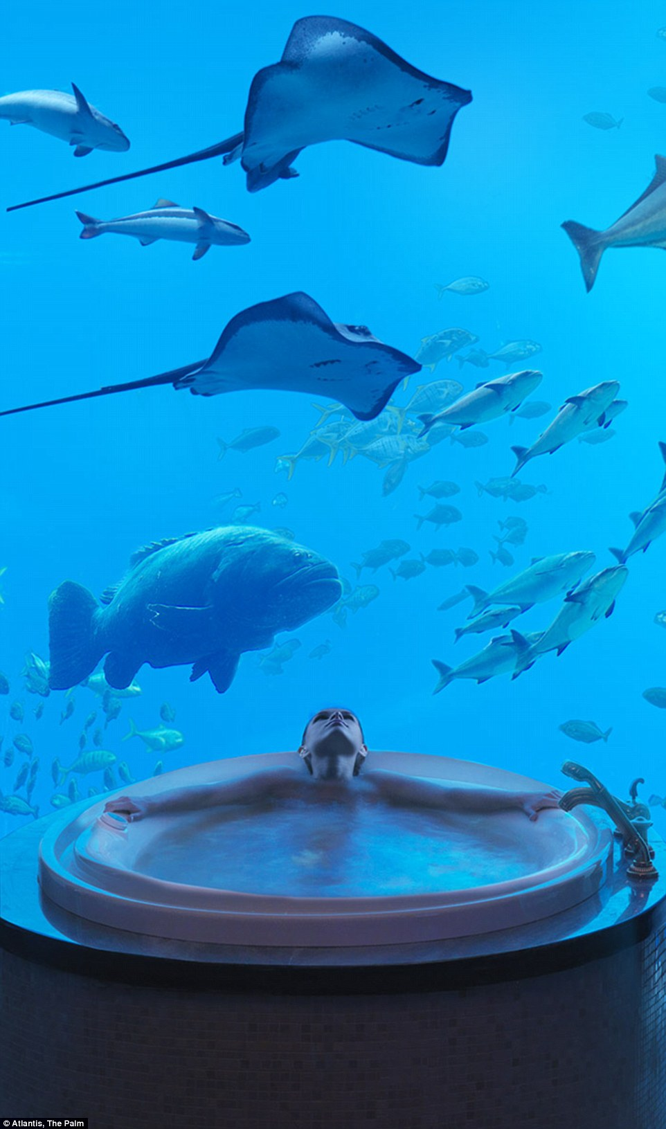 With a base price of about £5,450 ($8,200) a night, each suite has elegant perks, with the illusion of being under the sea