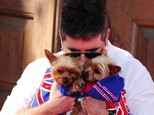 Simon Cowell is regularly photographed with his dogs Squiddly and Diddly
