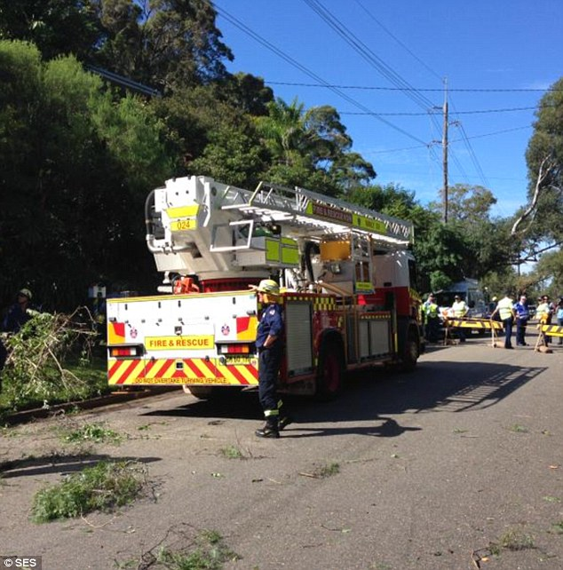 Parliamentary Secretary to the Premier, Gareth Ward, predicted the clean-up operation would take a long time