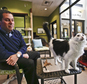 Dr. Gary Weitzman, president and CEO of the San Diego Humane Society and SPCA and author of the new National Geographic book ¿How to Speak Cat, observes the actions of Pepper, a black and white  resident of Humane Society shelter Wednesday, April 8, 2015, in San Diego.    (AP Photo/Lenny Ignelzi)