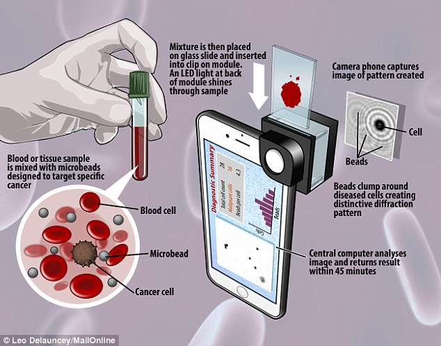 The graphic above shows how the new device works with a iPhone to analyse samples for signs of cancer
