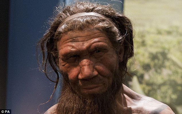 Neanderthals, like the one shown above, may well have been the world's first gourmet chefs, findings suggest