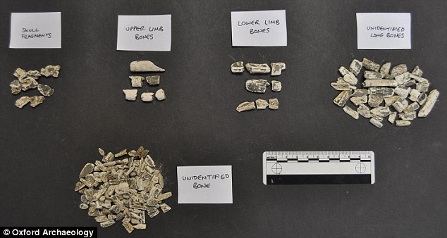Three radiocarbon dates, two from bone fragments and one from charcoal, have confirmed the remains are around 7,614 years old. Here, the bone fragments are sorted into types