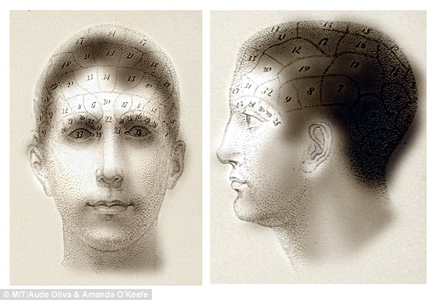 These images contain old fashioned maps of the distribution of cranial organs which can only be seen at close range to the image. Further away, all that will be seen are two normal port