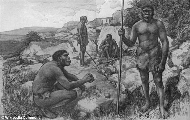 In a new study, one linguist argues that human language likely developed rapidly with people quickly using complex sentences that sound like our own. Pictured is a reconstruction ofof Rhodesian Men. Remains from this species have been dated between 300,000 and 125,000 years ago