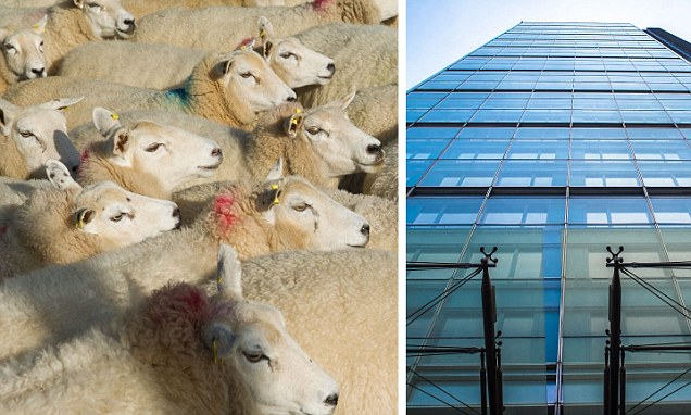 Investors pile into property and shun smaller companies, but should you follow the herd?