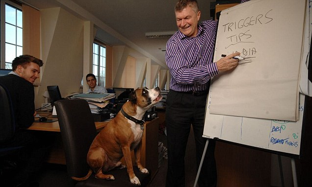 Four top financial advisers (and Trigger the dog) reveal the best way to invest £100,000
