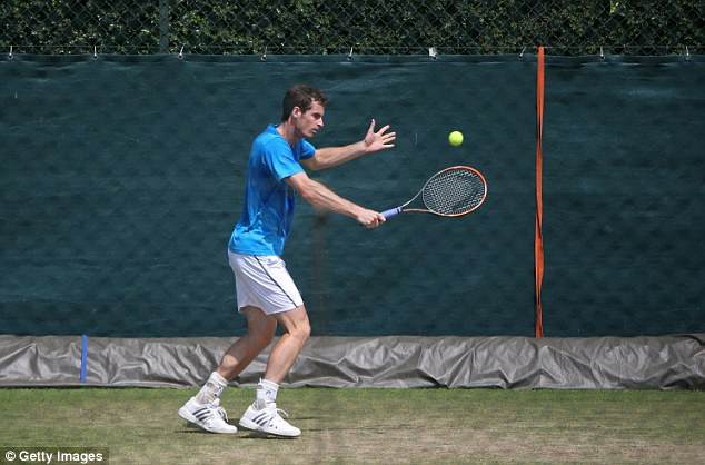 Focused: Andy Murray has performed well in the first week and is confident going into this week