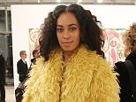 NEW YORK, NY - APRIL 24:  Solange Knowles attends the Max Mara, presenting sponsor's, celebration of the opening of The Whitney Museum Of American Art at it's new location on April 24, 2015 in New York City.  (Photo by Neilson Barnard/Getty Images for Max Mara)
