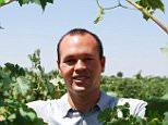 Iniesta vineyard4.jpg